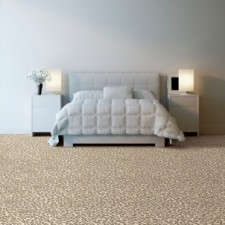 Stanton Broadloom Carpeting Wiltrex Collection